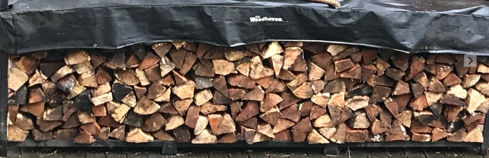 WoodPile in spring