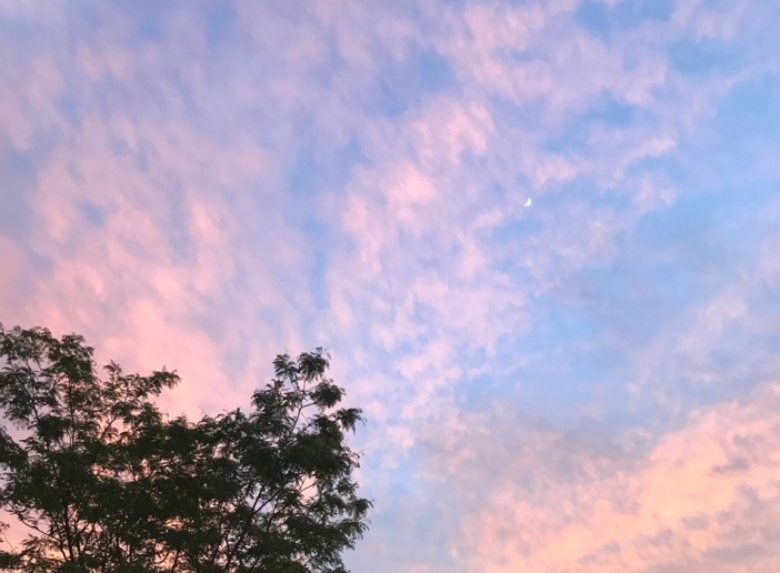 Blue pink sky with moon